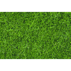 NOCH Dark Green Wild Grass 6mm (100g) HO Gauge Scenics 07094