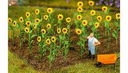 FALLER Sunflowers (16) HO Gauge Scenics 181256
