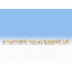 NOCH Sheep (14) Figure Set HO Gauge Scenics 15749