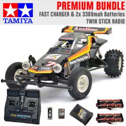TAMIYA RC 58336 The Hornet 2004 1:10 Premium Stick Radio Bundle