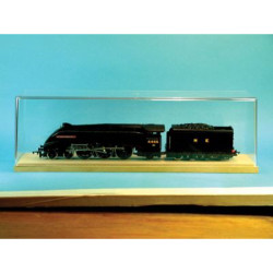 ExpoTools OO Gauge Loco Display Box.