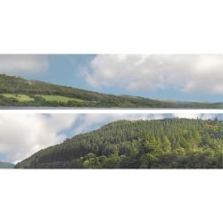 Art Printers Forest Hills OO Gauge 15in High 10ft Long High Backscene 201B