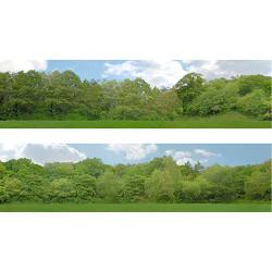 "Art Printers OO Gauge 15"" High Trees Backscene 149B"