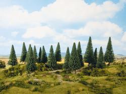 Noch Fir Standard Trees 4-10cm (16) Multi Scale 24643