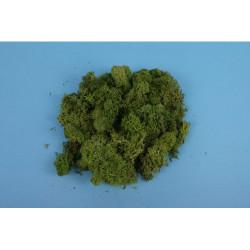 GAUGEMASTER Lichen - Light Green (80g) OO Gauge Scenics GM164