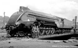 Hornby Loco R3985 LNER, P2 Class, 2-8-2, 2003 'Lord President' - Era 3