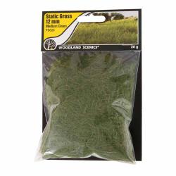 Woodland Scenics FS626 12mm Static Grass Medium Green Scenic Brush Foliage