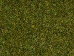Noch Meadow Wild Grass 9mm (50g) N07117