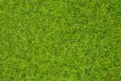 Noch Brown Wild Grass 9mm (50g) N07122