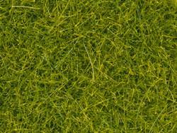 Noch Light Green Scatter Grass 4mm (20g) N08363