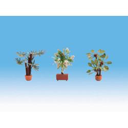 NOCH Mediterranean (3) Ornamental Plants Gauge Scenics HO 14023