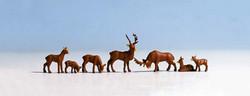 NOCH Deer (7) Figure Set HO Gauge Scenics 15730