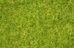NOCH Summer Meadow Grass Blend (100g) HO Gauge Scenics 07076