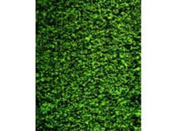 FALLER Mid Green Foliage Material 250x120mm HO Gauge Scenics 181392
