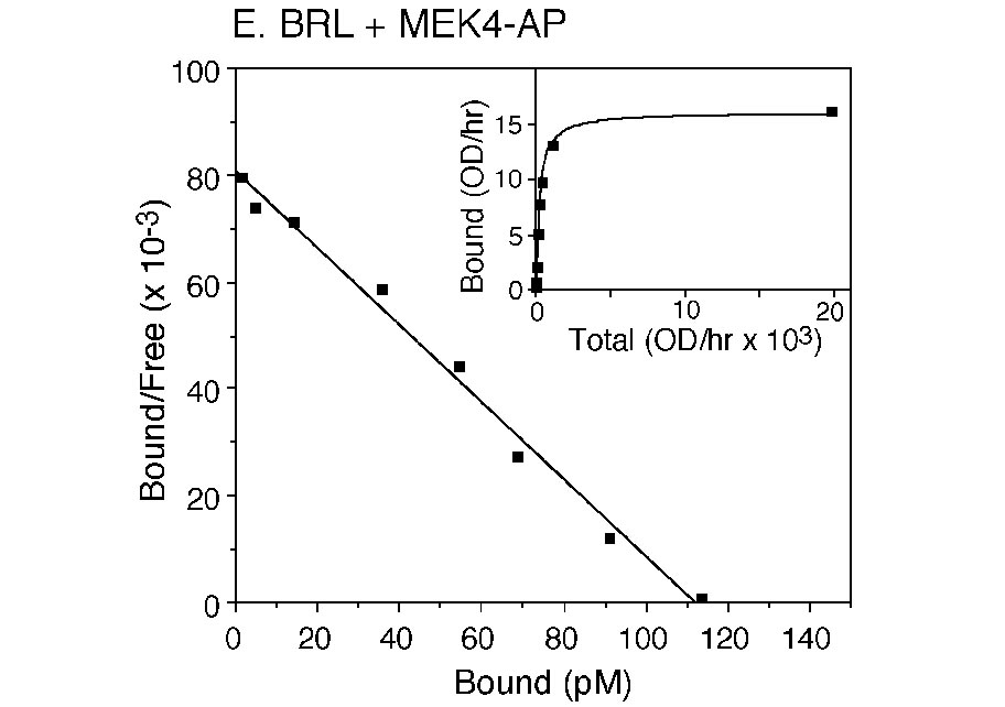 Receptor/ligand binding assay image