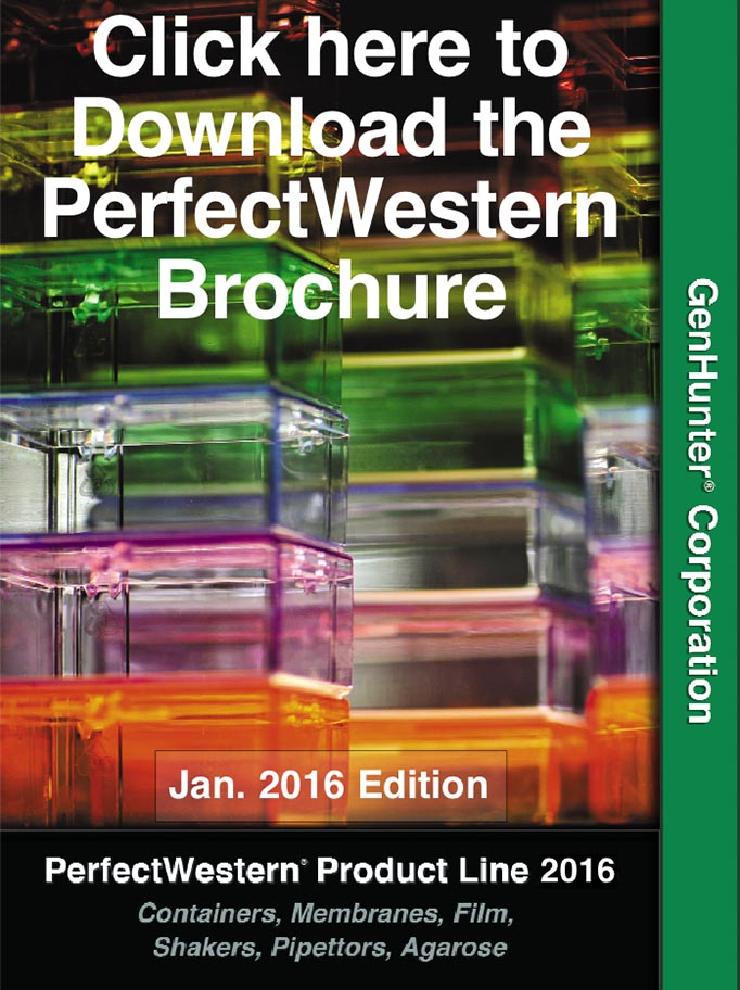 perfectwesternbrochure2016coverdownload.jpg