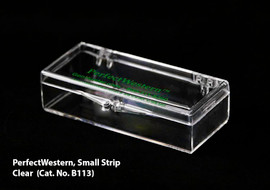 PerfectWestern Containers (for Membrane Strips)