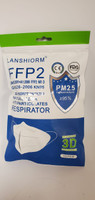 Lanshiorm KN95 Respirator Mask – Bag of 10