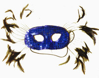 Feathers and Sequins Mask
