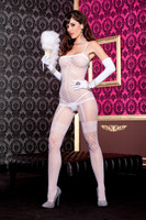 Sheer Faux Fence Net Bodystocking