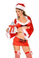 Cute and Sexy Miss Santa