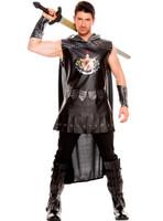 Medieval Warrior King