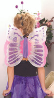 Fairy/Butterfly Wings