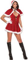 Mrs. Santa Costume