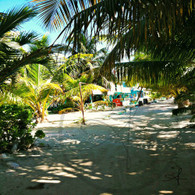 Caye Caulker Sandy Path