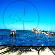Caye Caulker Beachline Fence