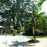 Black Orchid View of Guest Houses