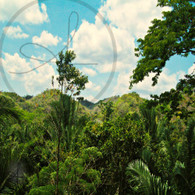 Belize Zip Line Tower Mountainous View