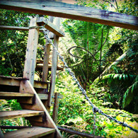 Belize Zip Line Platform Steps