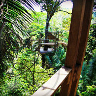 Belize Zip Line Tower from Tower