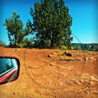 Sedona Red Rock Red Dirt