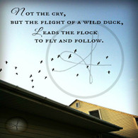 Flight of the Duck
