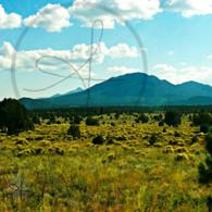 Kendrick Mountain Silhouette