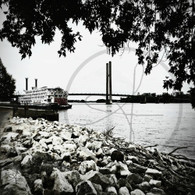 Scenic View American Queen BW