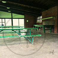 Crapo Skate House Green Benches