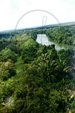 Belize River Postcard