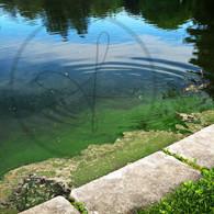 Ripple Lake Starker