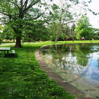 Reflection Lake Starker