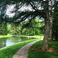 Path Around Lake Starker