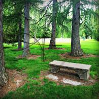 Crapo Park Stone Bench