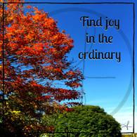Find Joy 10x10