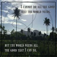 Good World Needs