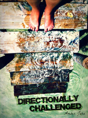 Book: Directionally Challenged