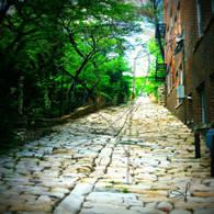 Cobblestone Alley Bottom