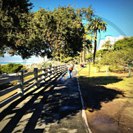 Palisades Park Walkway