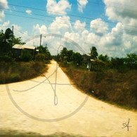 Belize Long Dirt Road
